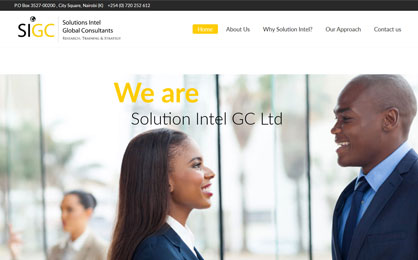Solution Intel Global Consultants